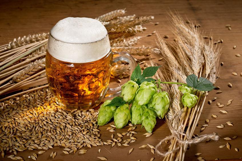 Bier Hopfen Schuppenflechte Haut